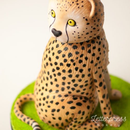 3D carved cheetah cake, cat, big cat, spots, sculpted animal cake