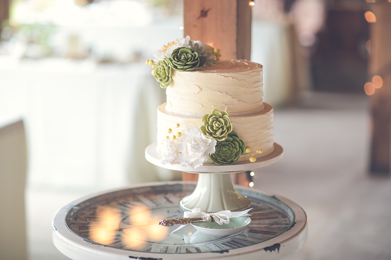 Rustic Buttercream And Succulent Cake Victoria Bc Letterpress Bakery