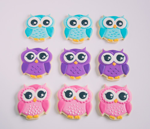 Sweet birthday decorated sugar cookies - owls in bright pink, purple and blue